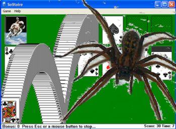 Aranha no ecrã do jogo